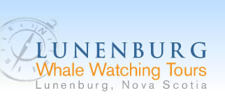 Lunenburg Whale Watching